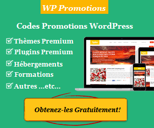 Faites le plein de promos WordPress avec www.wp-promotions.fr